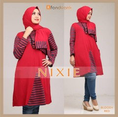 nixie (3)
